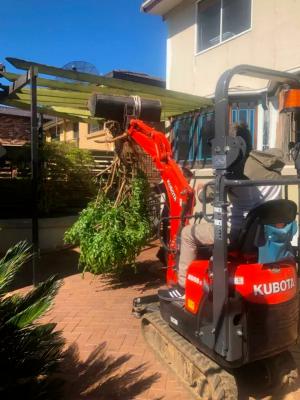 Hire 1T Mini Excavator