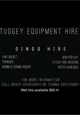 Hire Dingo