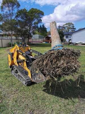 Hire Caterpillar new generation 1.7 tonne excavators